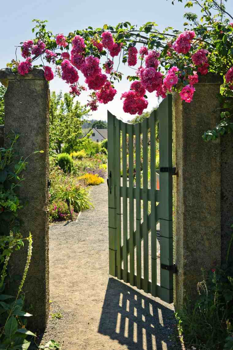 bonita entrada rosas silvestres