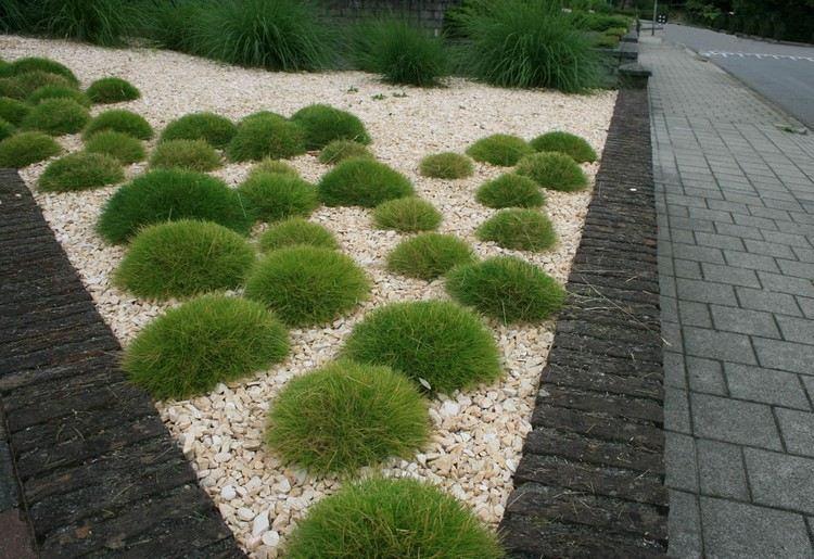 entradas jardines mantillo bloques salas espacios