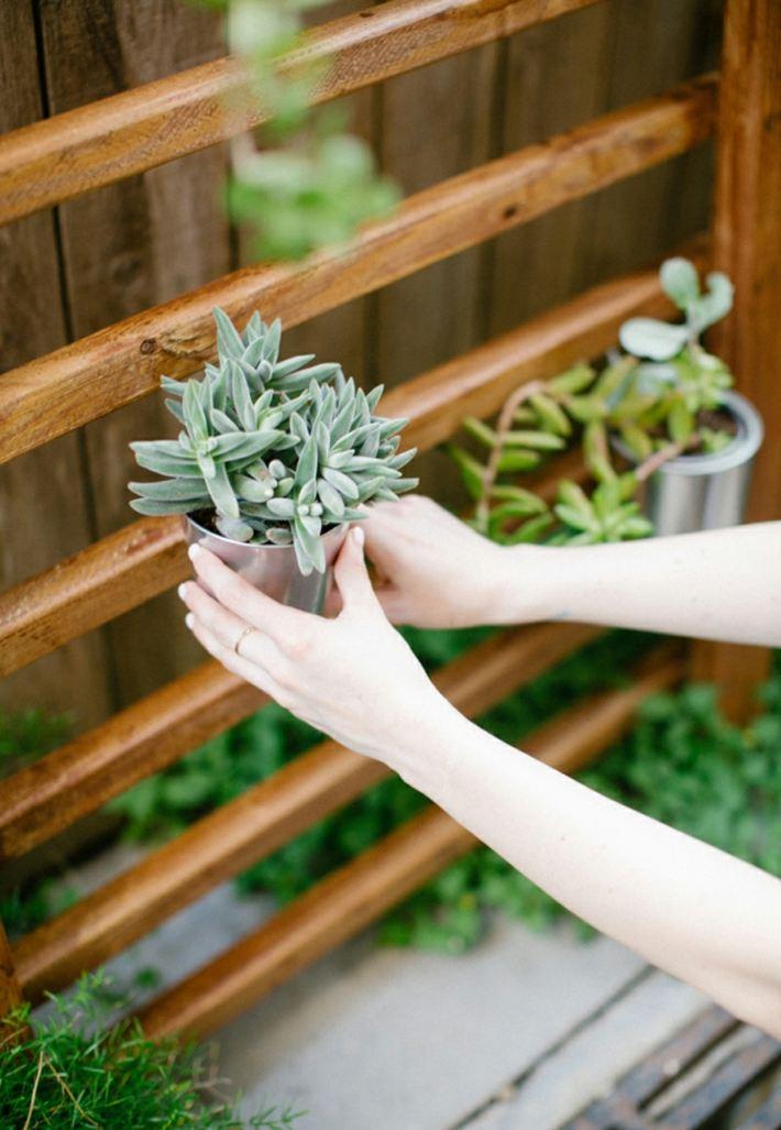 escaleras pequeñas plantas salones imagenes muro