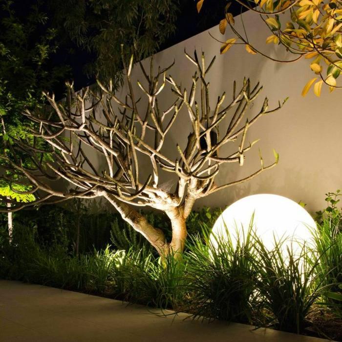 esferas modelos cabezas salas hierba plantas