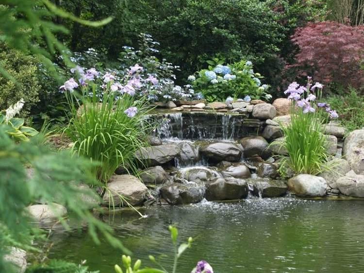 estanques jardin grande plantas flores espacios amplios ideas