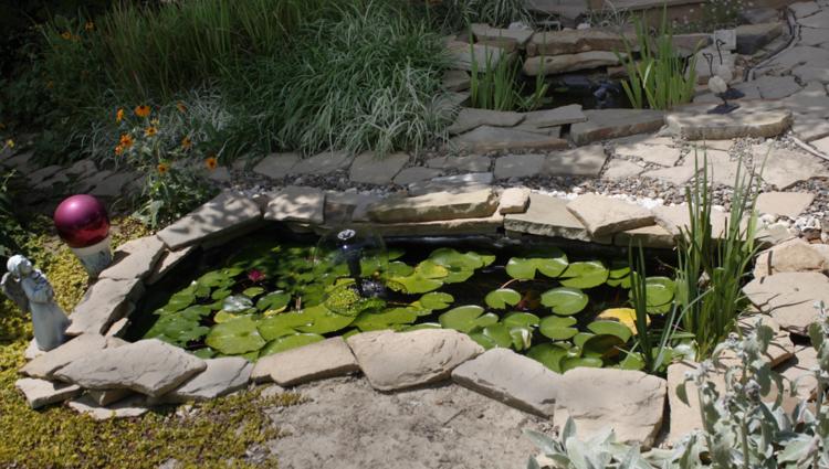 estanques jardin pequeno rodeado piedras ideas