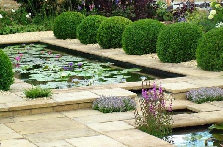 estanques jardin plantas acuaticas original ideas