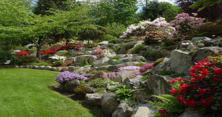 estupendo diseño alpineum jardín