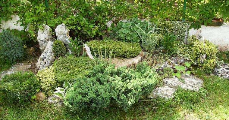 estupendo jardín diseño paisaje