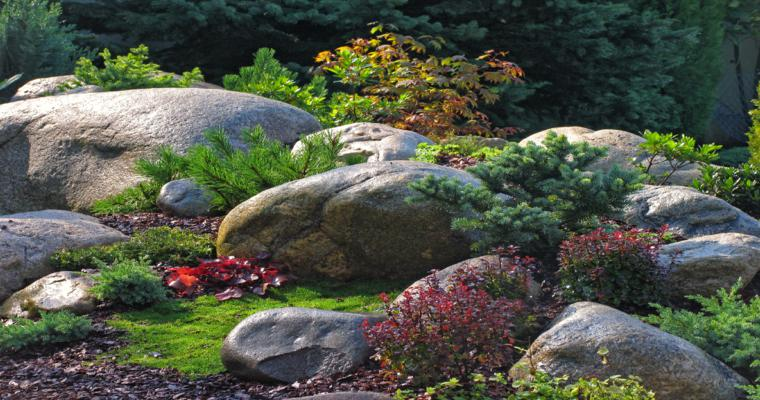 estupendo paisaje jardín rocallas
