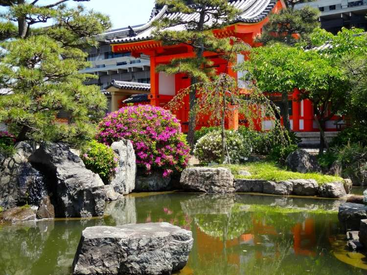 estupendo jardin estanque agua