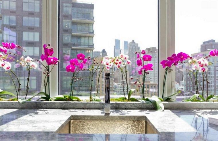 flores interior cultivo hidroponico