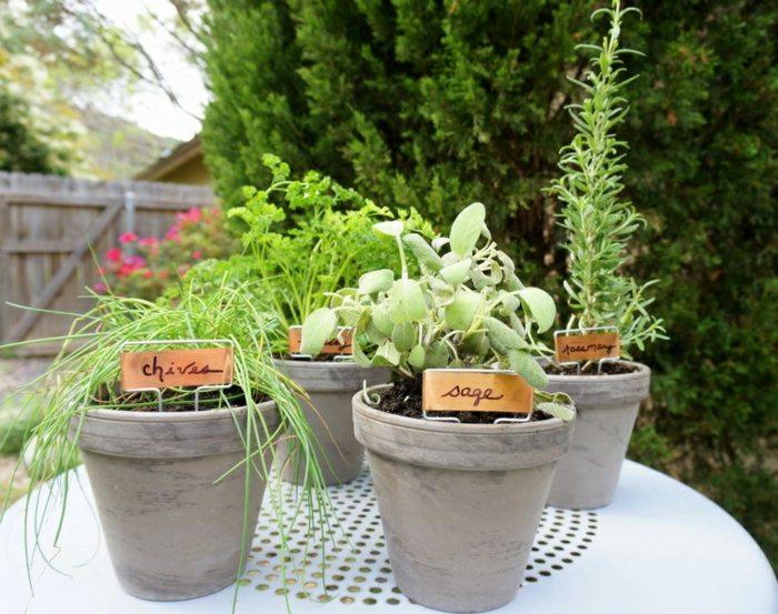 hierbas aromaticas detalles mesas pinos