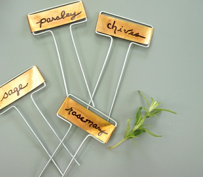 hierbas aromaticas lineas salones plantas
