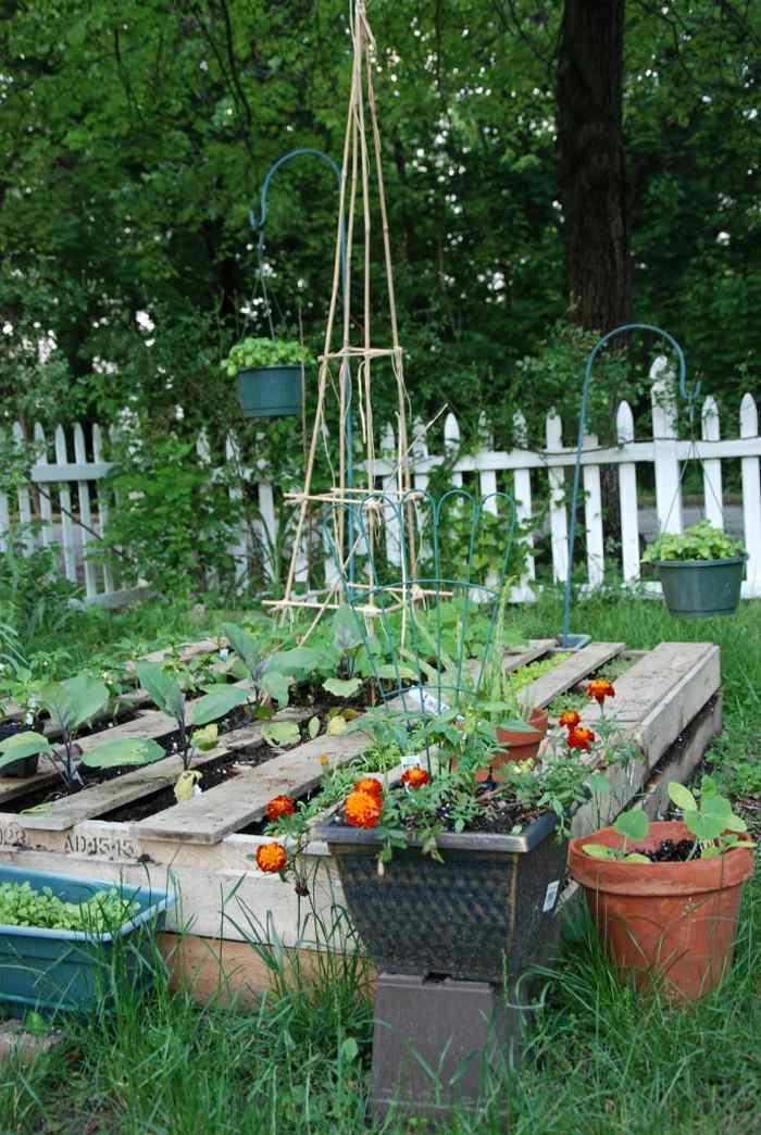 ideas-creativas-palets-amantes-jardineria
