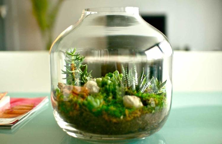 ideas para decorar plantas naturales
