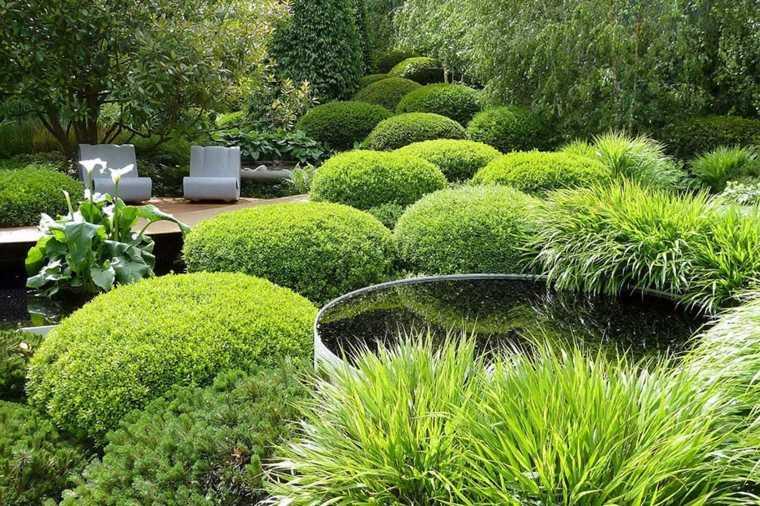 ideas paisajismo moderno plantas
