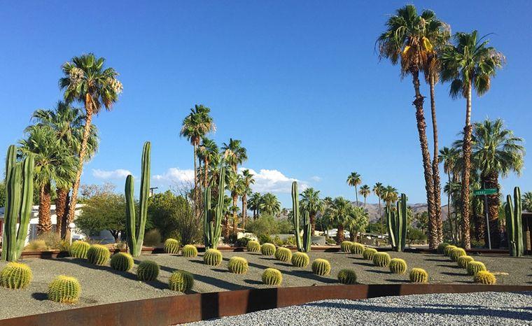 jardin cactus valla corten
