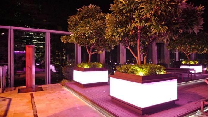 Jardines luminarias creativas y c mo sacarles el m ximo - Plantas jardineras exterior ...
