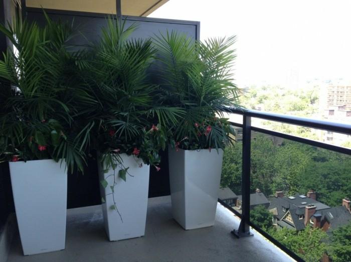 jardineras ideas estilos conceptos blancas blanco