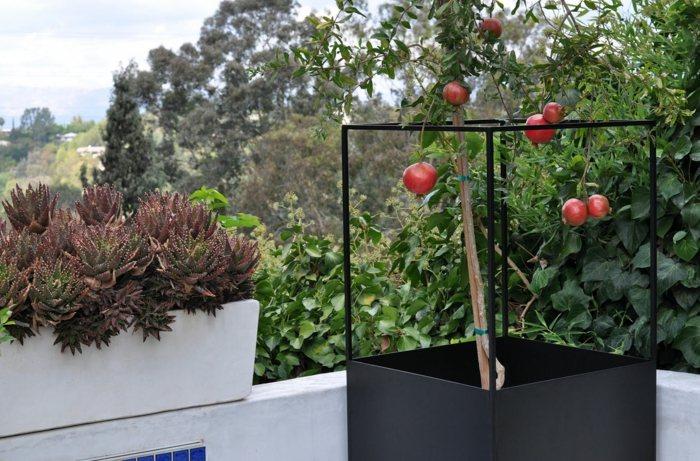 jardineras ideas estilos soleador plantas colores