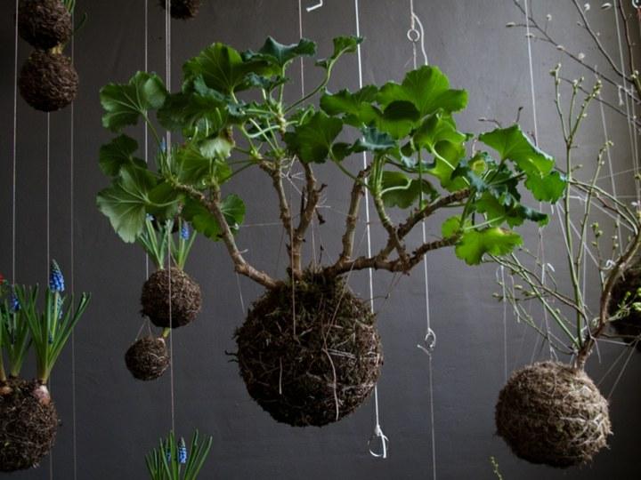 jardines creatividad detalles soluciones listas bolas