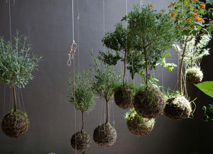 jardines creatividad detalles soluciones pendientes cuerdas