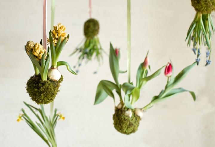 jardines creatividad flores colores luminosos amarillo
