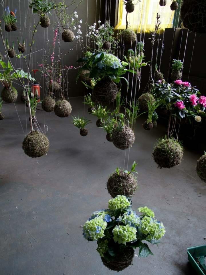 jardines creatividad flores colores suelos