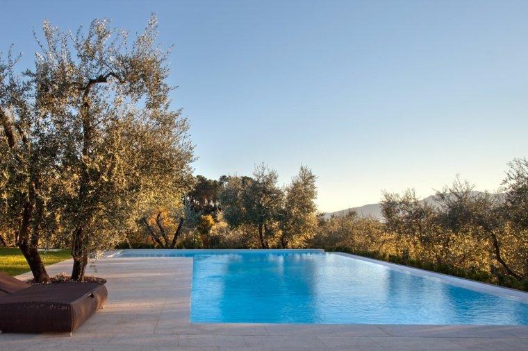 jardines modernos con piscina simple ideas