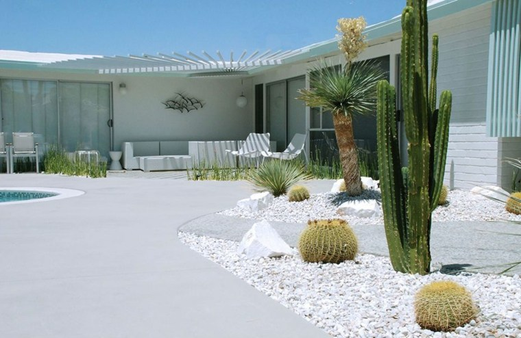 jardines modernos decorados cactus