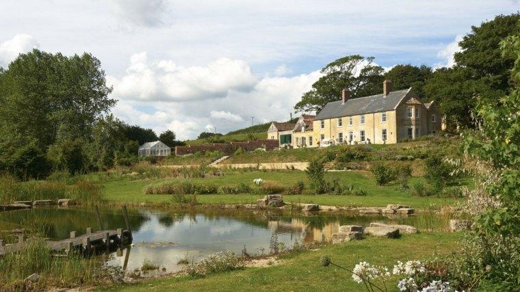 lago pequeno jardin clasico plantas ideas