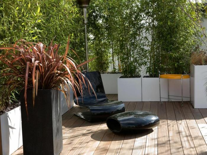 laterañes plantas sitios elegantes muebles