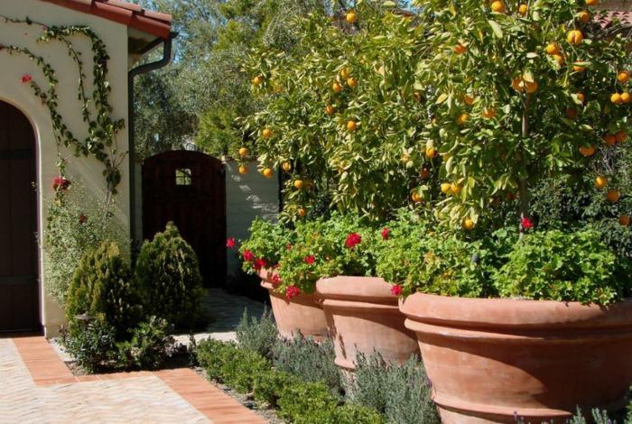 maceteros grandes contemporaneos jardines barro