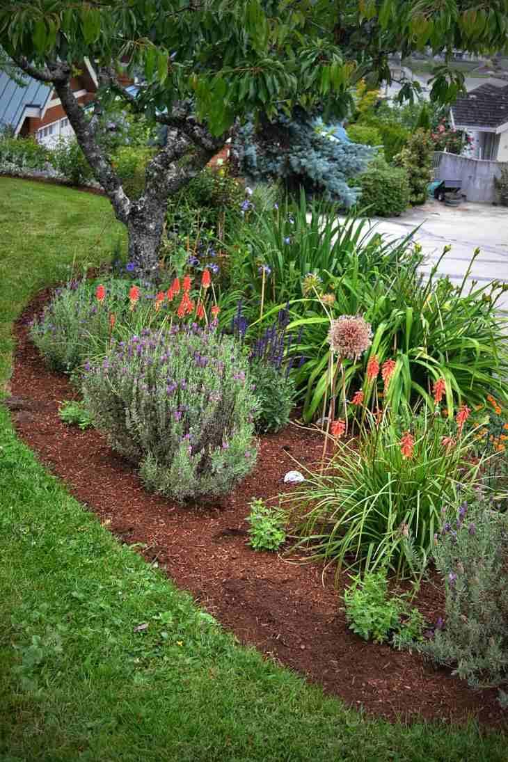 mantillo arboles plantas salones flores