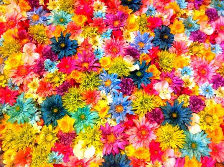 List of synonyms and antonyms of the word la primavera de - Plantas de temporada primavera ...