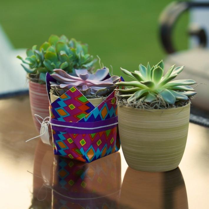 minimalista coloridos salas muebles jardines
