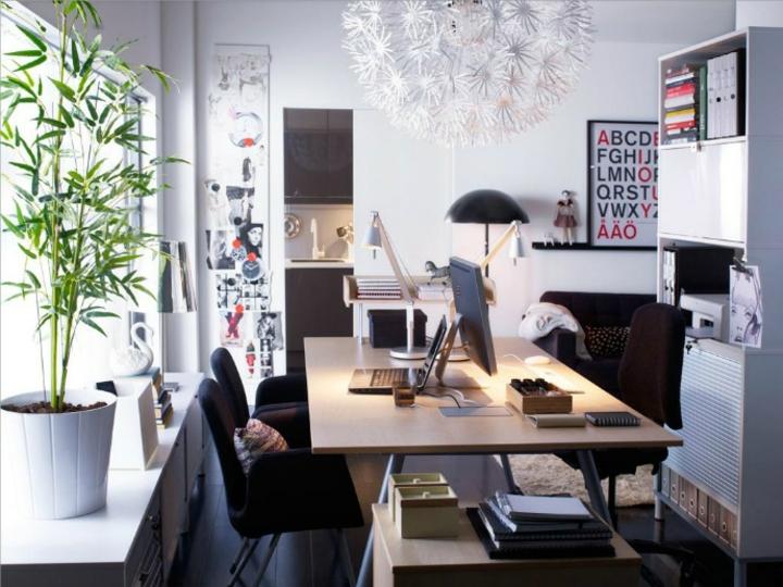 minimalistas plantas colores puentes elegantes