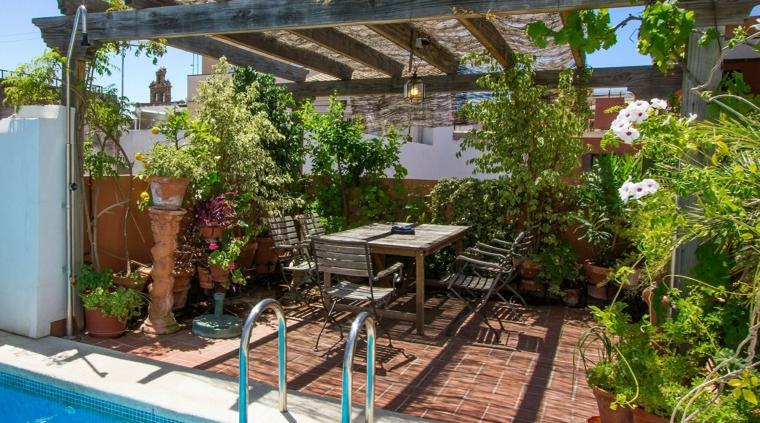 muebles el paraiso terraza moderna plantas pergola madera ideas