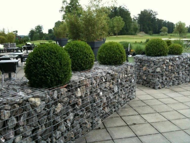 muros jardin setos arbustos