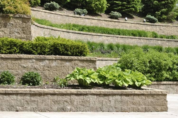 muros piedra gradas plantas