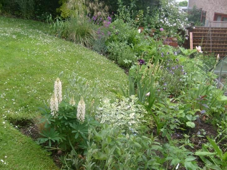 naturales plantas conceptos estilos blanco