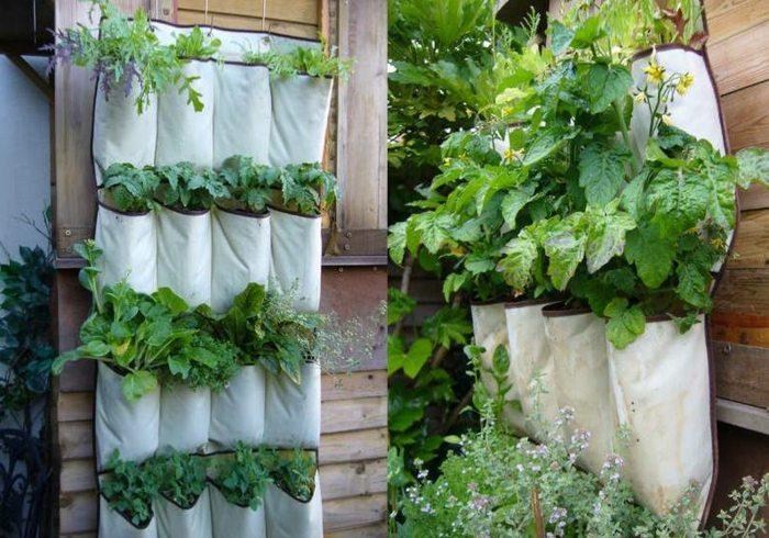 opciones hierbas jardin vertical bolsas ideas