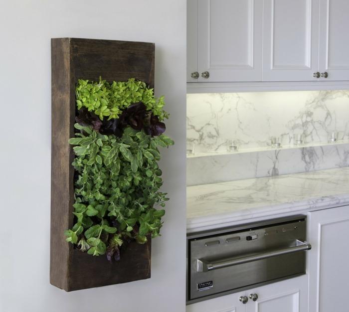 opciones hierbas jardin vertical caja ideas