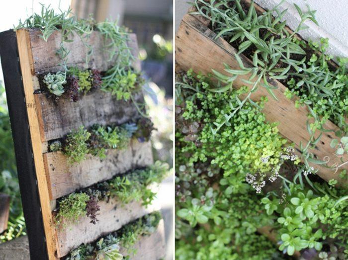 opciones hierbas jardin vertical palets ideas