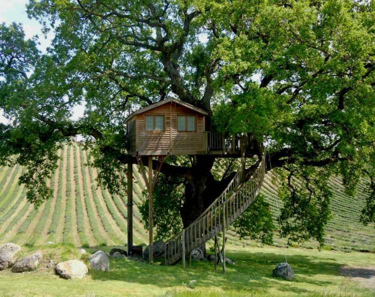 original cabaña madera arbol