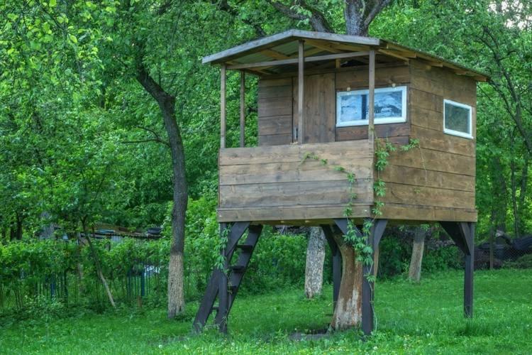 original cabaña madera arbol bosque