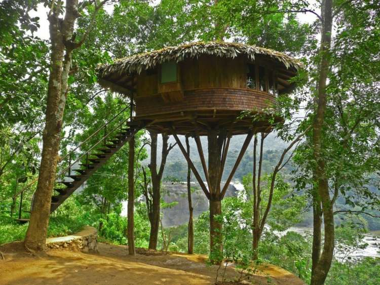 original casita redonda arbol