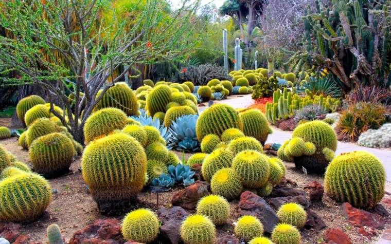 original decoracion bolas jardin de cactus