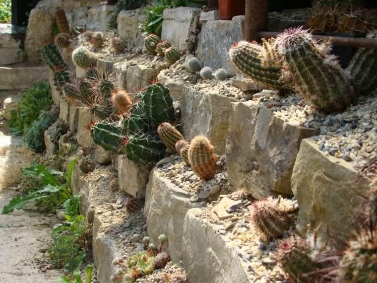 original decoración cactus rocalla