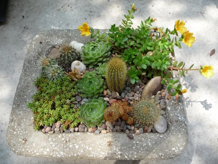 original fuente piedra plantas