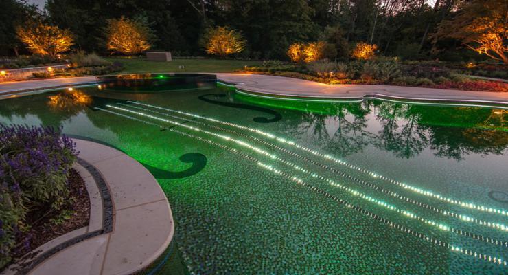original violin shaped pool
