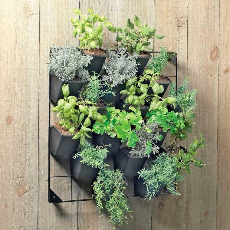 original macetero plantas pared