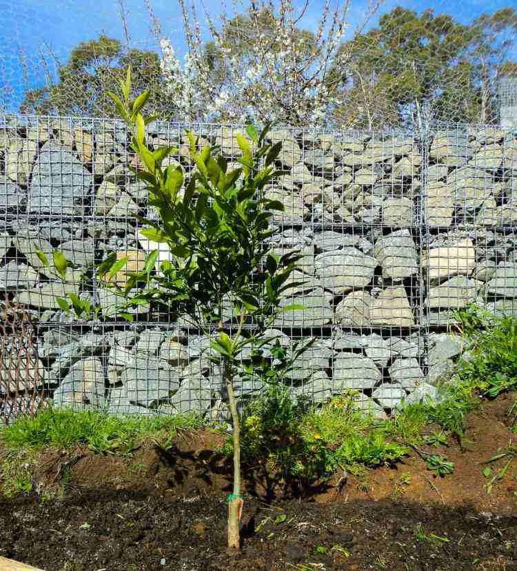 original valla jardin piedras grises